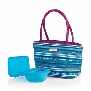 Tupperware stylish stripes lunch set